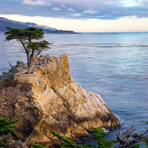 Cypress-Property-Management